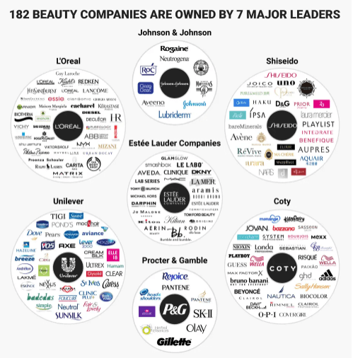 beauty companies owned by brand infographic